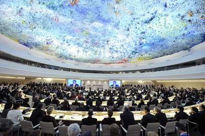 Human Rights Council Conference Room, Geneva, Switzerland 2008
